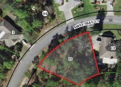 7 Sweetbay Court, Homosassa, FL 34446 (MLS #W7838531) :: Delgado Home Team at Keller Williams