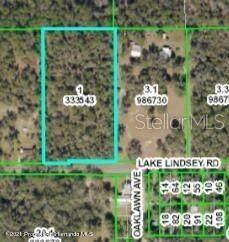 22308 Lake Lindsey Road, Brooksville, FL 34601 (MLS #W7838561) :: Delgado Home Team at Keller Williams