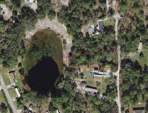 8171 Big Trail, Weeki Wachee, FL 34613 (MLS #W7838722) :: Cartwright Realty