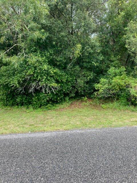 2210 E Celina Street, Inverness, FL 34453 (MLS #W7838882) :: Global Properties Realty & Investments