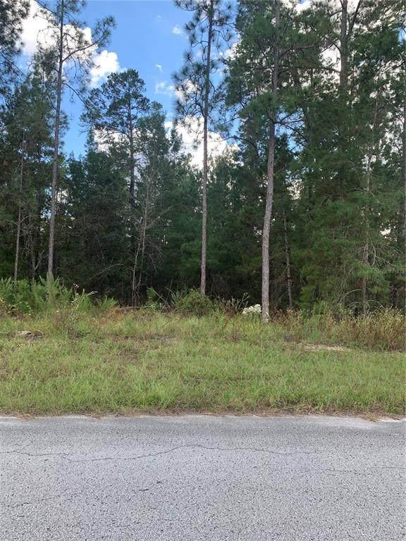 84 Grass Street, Homosassa, FL 34446 (MLS #W7838989) :: Global Properties Realty & Investments