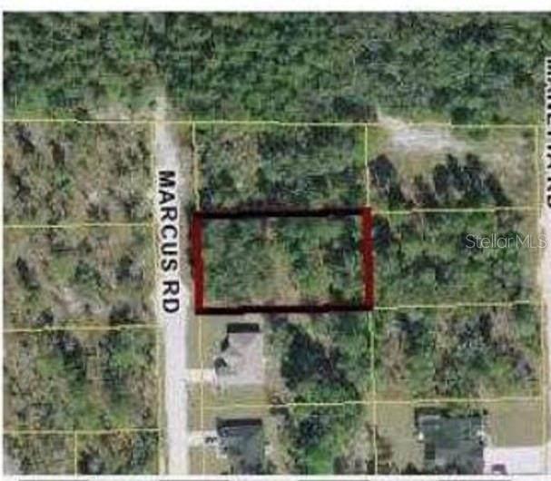 9124 Marcus Road, Weeki Wachee, FL 34613 (MLS #W7839102) :: Bustamante Real Estate