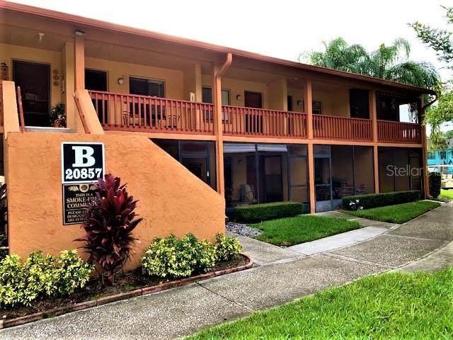 20857 Haulover Cove B7, Lutz, FL 33558 (MLS #W7839131) :: Cartwright Realty