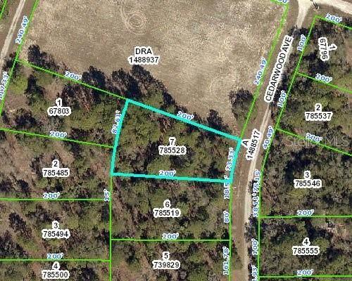 0 Cedarwood Avenue, Weeki Wachee, FL 34614 (MLS #W7839170) :: Everlane Realty