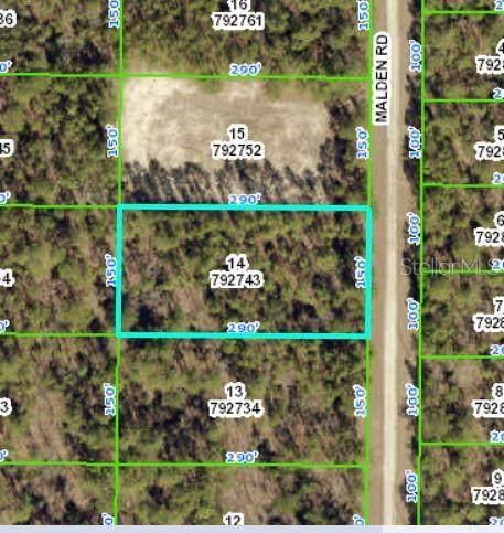 Malden Road, Weeki Wachee, FL 34614 (MLS #W7839251) :: Everlane Realty