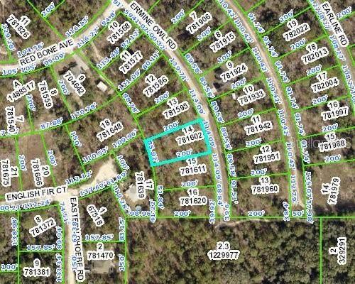 14207 Ermine Owl Road, Weeki Wachee, FL 34614 (MLS #W7839306) :: Stellar Home Sales