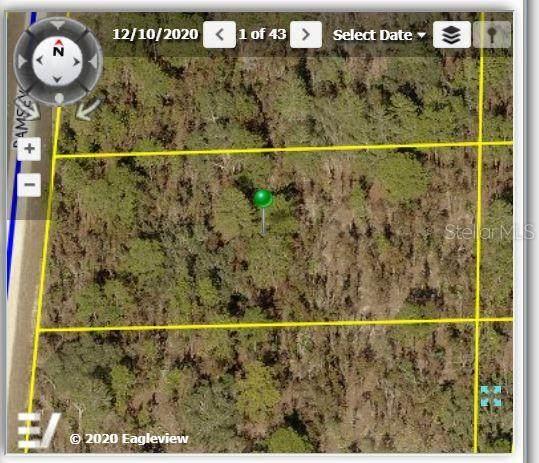 18166 Ramsey Road, Weeki Wachee, FL 34614 (MLS #W7839366) :: Stellar Home Sales
