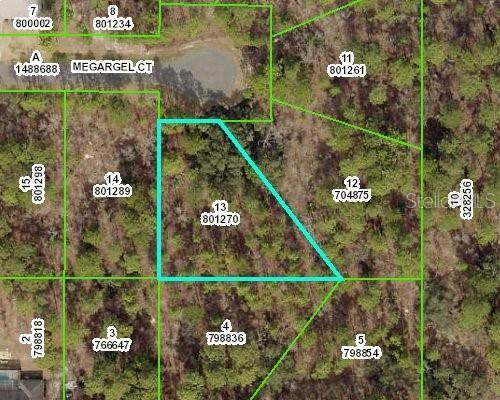 11336 Megargel Court, Weeki Wachee, FL 34614 (MLS #W7839388) :: Future Home Realty