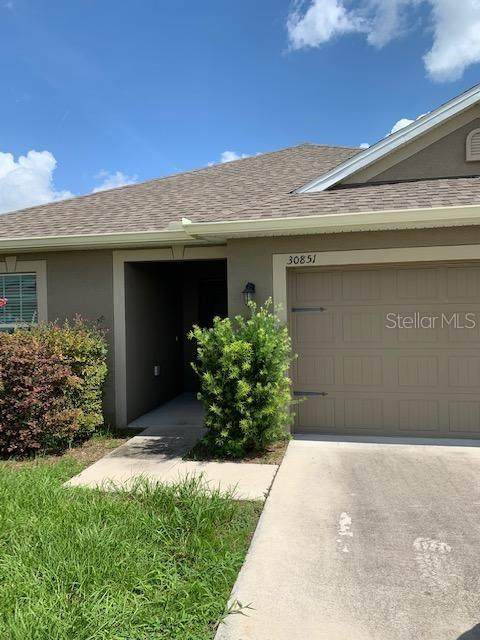 30851 Water Lily Drive, Brooksville, FL 34602 (MLS #A4474712) :: Griffin Group
