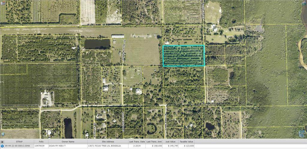 13671 and 13681 Ficus Tree Lane - Photo 1