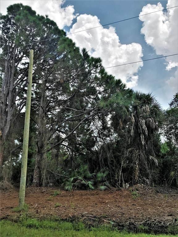 Taplin Avenue, North Port, FL 34291 (MLS #A4511422) :: Gate Arty & the Group - Keller Williams Realty Smart