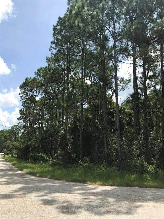 San Bruno Road, North Port, FL 34286 (MLS #A4511468) :: Gate Arty & the Group - Keller Williams Realty Smart