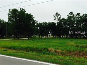 9TH Street NE, Fort Meade, FL 33841 (MLS #B4700566) :: The Duncan Duo Team