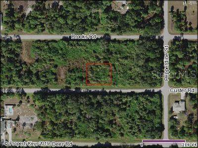 26382 Custer Road, Punta Gorda, FL 33955 (MLS #C7415439) :: Armel Real Estate