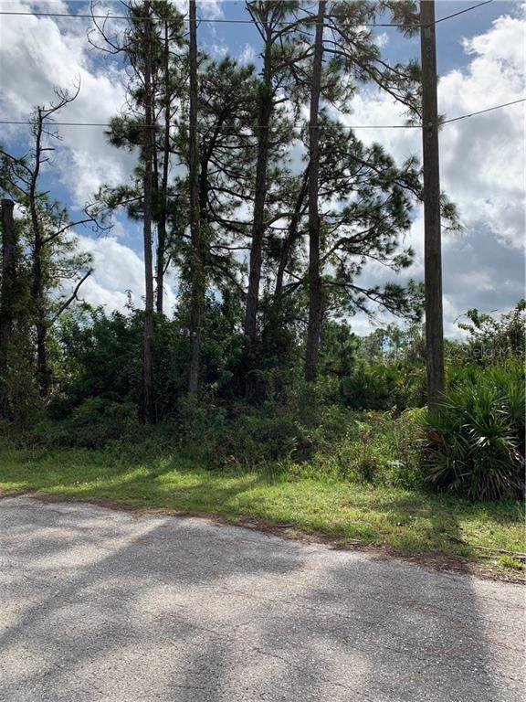 862 Charles Sise Street E, Lehigh Acres, FL 33974 (MLS #C7421433) :: Young Real Estate