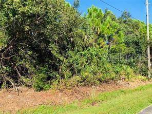 23260 Elmira Boulevard, Port Charlotte, FL 33980 (MLS #C7421939) :: Cartwright Realty
