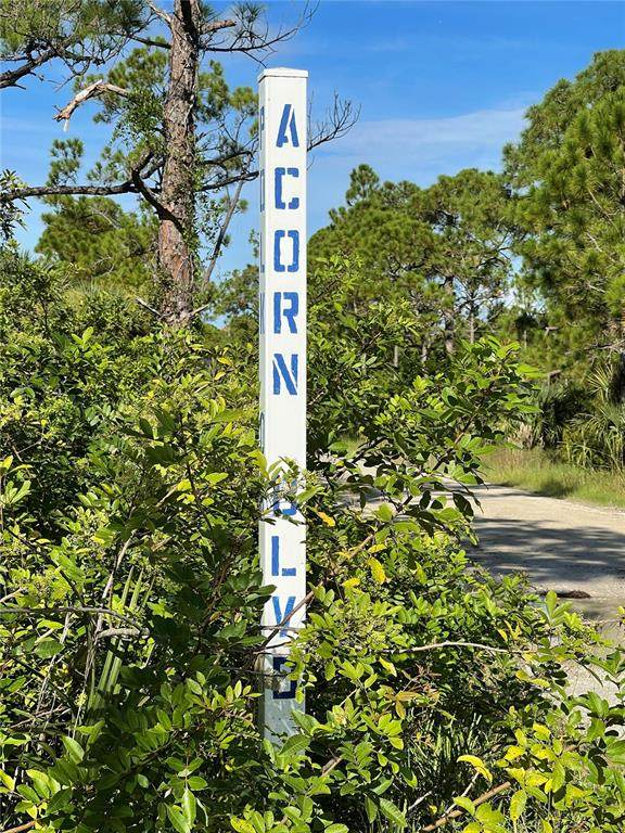 7457 Acorn Boulevard, Punta Gorda, FL 33982 (MLS #C7449187) :: Everlane Realty