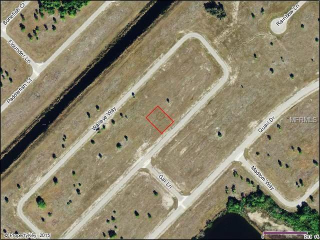 13658 Walleye Way, Placida, FL 33946 (MLS #D5909183) :: The BRC Group, LLC