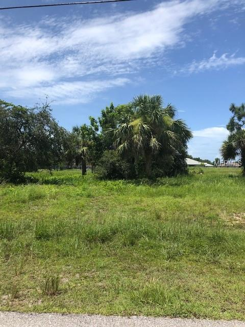 39 Mariner Lane, Rotonda West, FL 33947 (MLS #D6101723) :: Griffin Group
