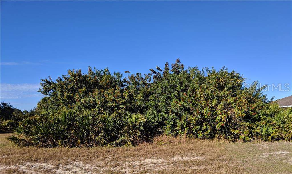 158 Lime Tree Park - Photo 1