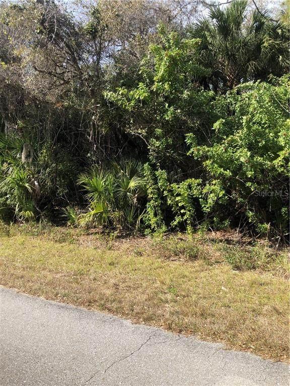 18079 Grace Avenue, Port Charlotte, FL 33948 (MLS #D6117052) :: Pepine Realty