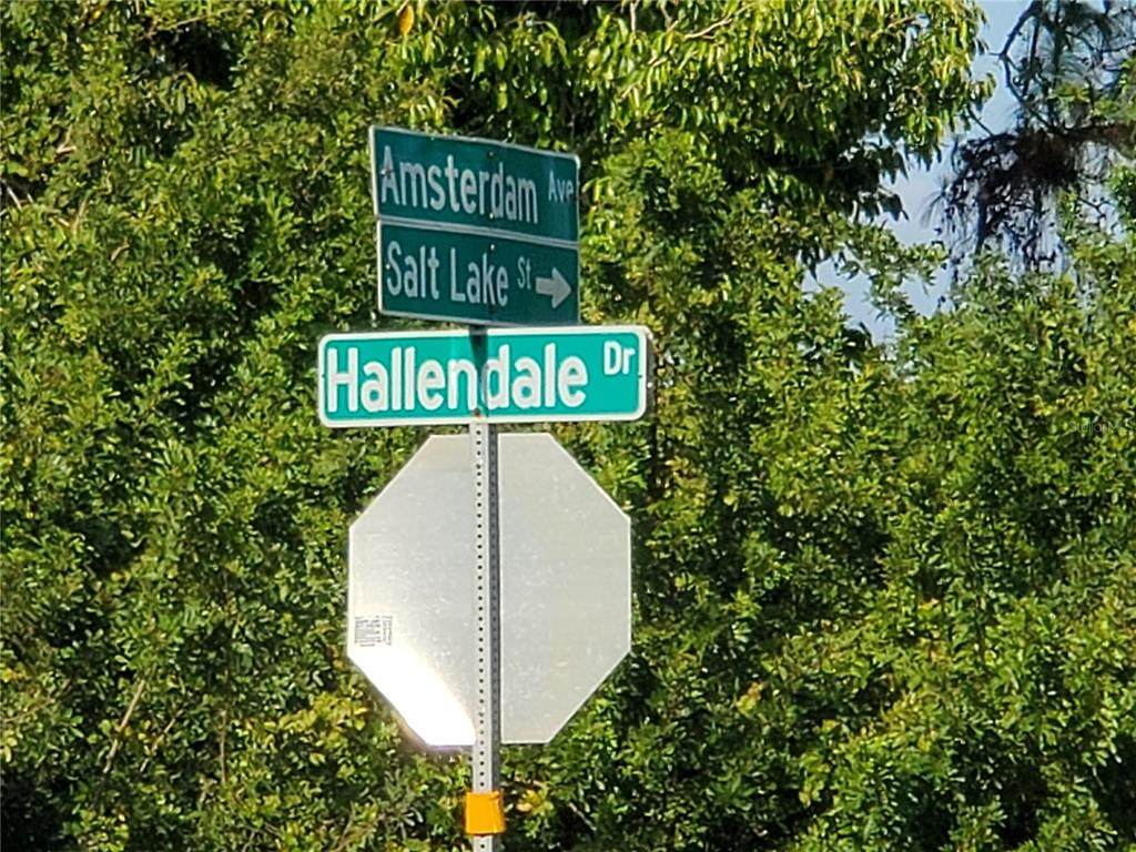 10077 Hallendale Avenue - Photo 1