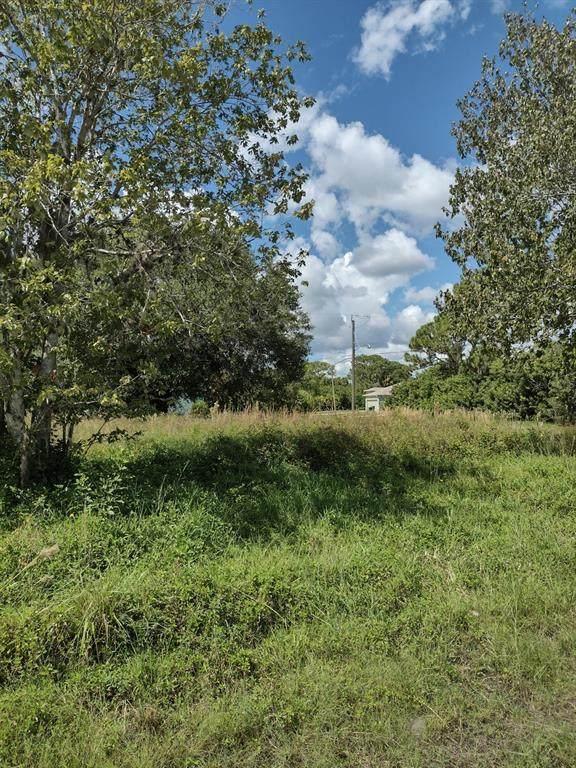 14085 Hopewell Avenue, Port Charlotte, FL 33981 (MLS #D6121737) :: The Nathan Bangs Group