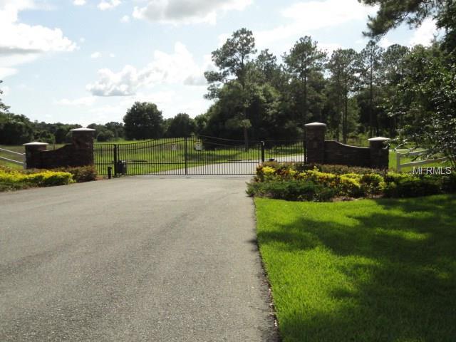 Bonsmara Drive, Groveland, FL 34736 (MLS #G4845507) :: Griffin Group