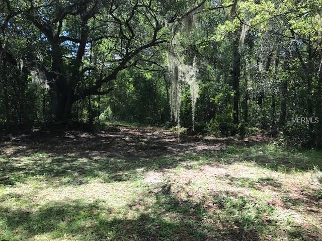 State Road 46, Sorrento, FL 32776 (MLS #G4846945) :: The Duncan Duo Team