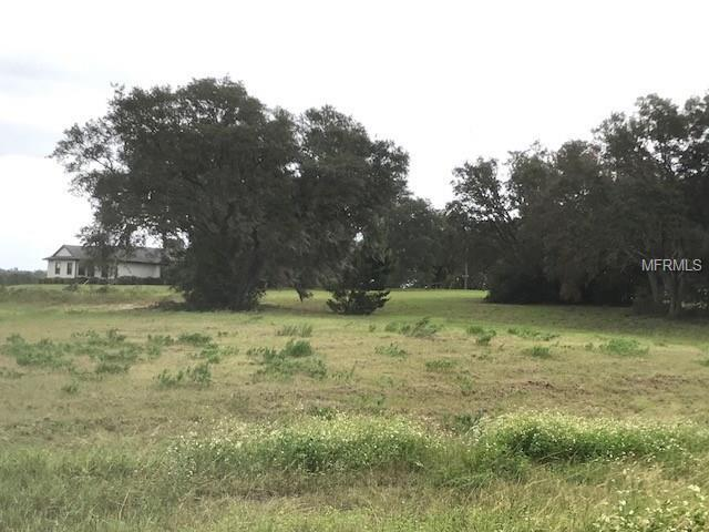 XXXX Highcrest View, Lady Lake, FL 32159 (MLS #G4850133) :: The Duncan Duo Team