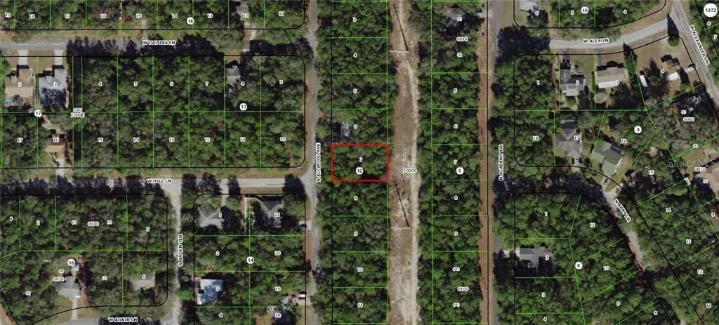 10345 Allwood Terrace - Photo 1