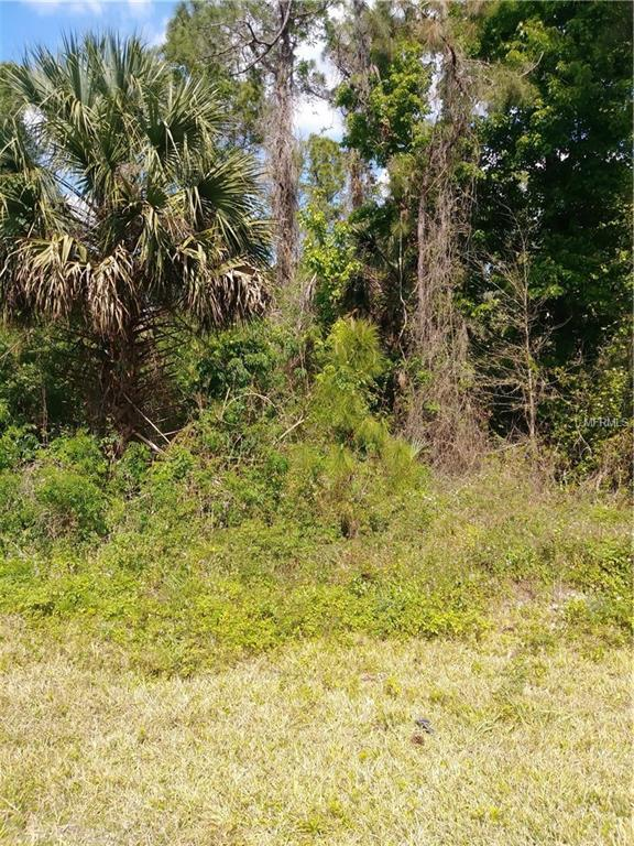 County Road 42, Paisley, FL 32767 (MLS #G5013325) :: The Duncan Duo Team