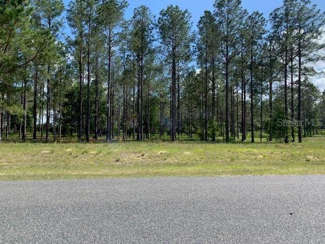35151 Pinegate Trail, Eustis, FL 32736 (MLS #G5015289) :: Bustamante Real Estate