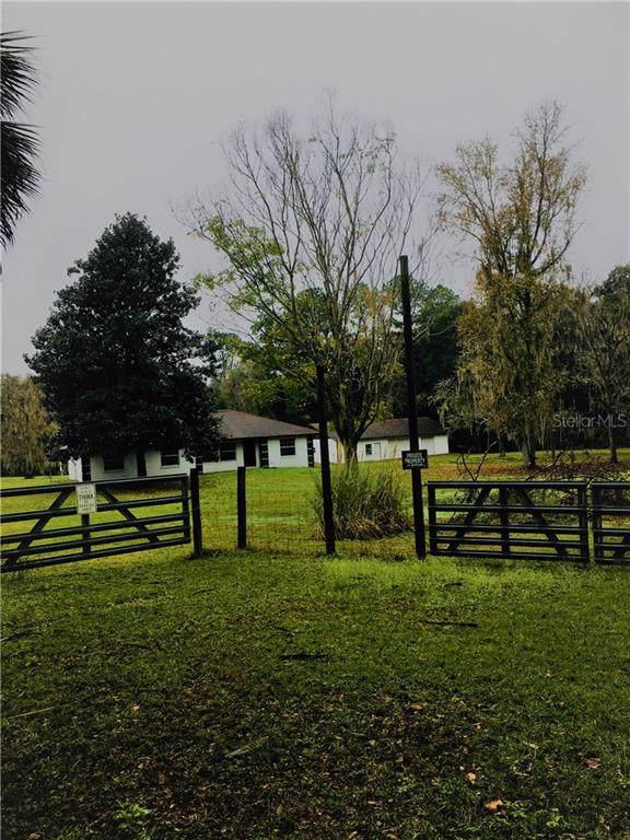 4570 SE 117TH Place, Belleview, FL 34420 (MLS #G5024161) :: Bustamante Real Estate