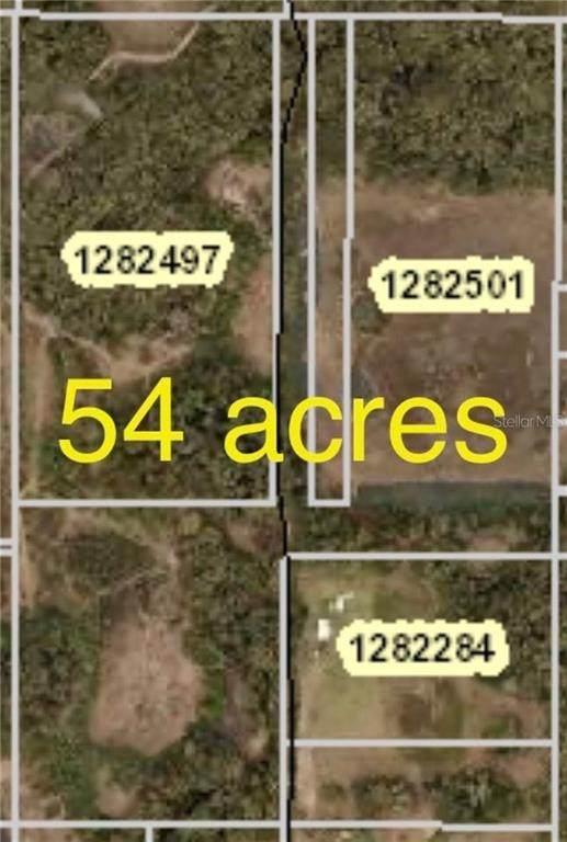 37428 Harris Lake Road, Lady Lake, FL 32159 (MLS #G5030900) :: Dalton Wade Real Estate Group