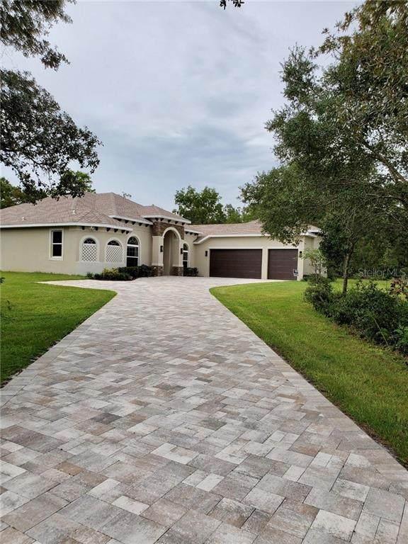 41780 Vitex Court, Eustis, FL 32736 (MLS #G5033753) :: Team Buky