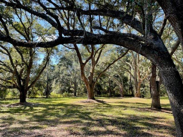 7943 State Road 33, Clermont, FL 34714 (MLS #G5048083) :: Everlane Realty