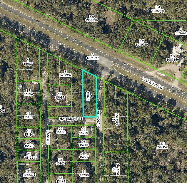 0 Hilton Drive, Brooksville, FL 34601 (MLS #H2204037) :: Mark and Joni Coulter | Better Homes and Gardens