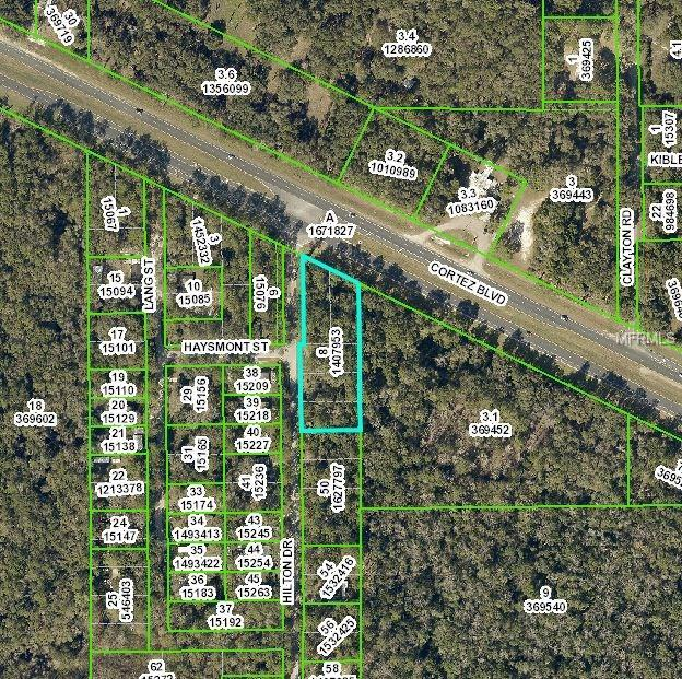 0 Hilton Drive, Brooksville, FL 34601 (MLS #H2204038) :: Mark and Joni Coulter | Better Homes and Gardens