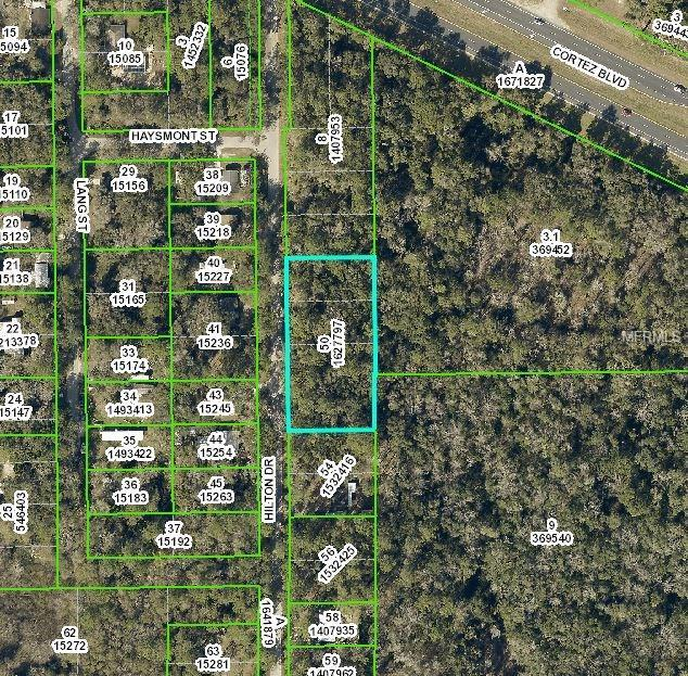 0 Hilton Drive, Brooksville, FL 34601 (MLS #H2204041) :: Mark and Joni Coulter | Better Homes and Gardens