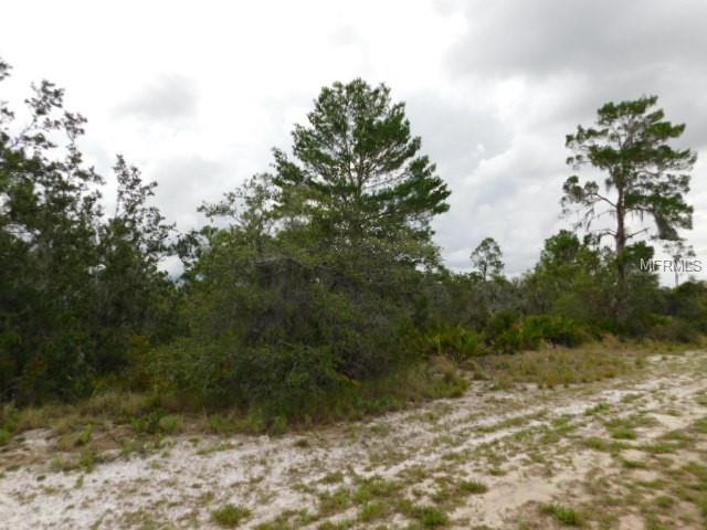 Woodstork Way, Frostproof, FL 33843 (MLS #K4900032) :: Team Pepka