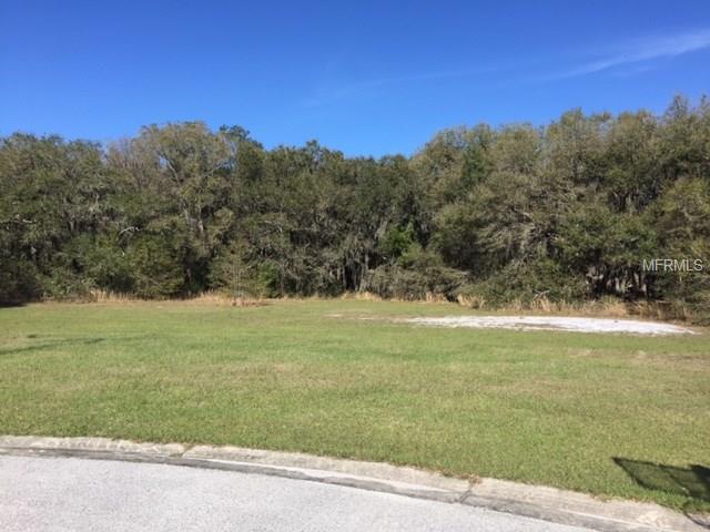 6911 Orianna Oaks Drive, Plant City, FL 33567 (MLS #L4719048) :: The Duncan Duo Team