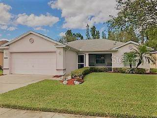 3882 Whistlewood Circle, Lakeland, FL 33811 (MLS #L4911495) :: Gate Arty & the Group - Keller Williams Realty Smart