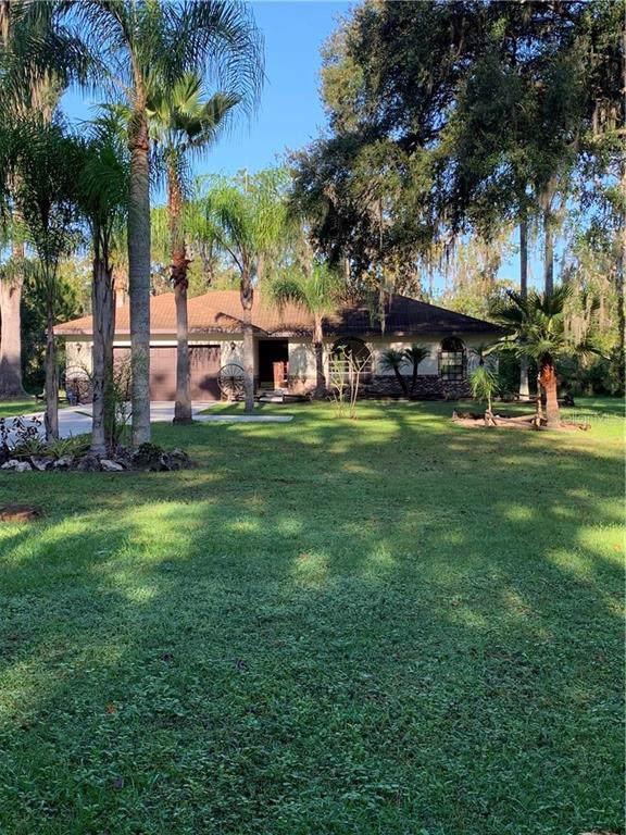 8636 Oakwood Drive, Lakeland, FL 33810 (MLS #L4912221) :: Rabell Realty Group
