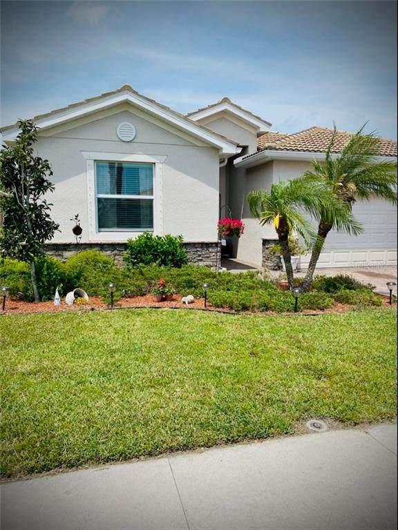 11656 Anhinga Avenue, Venice, FL 34292 (MLS #N6114899) :: Lockhart & Walseth Team, Realtors