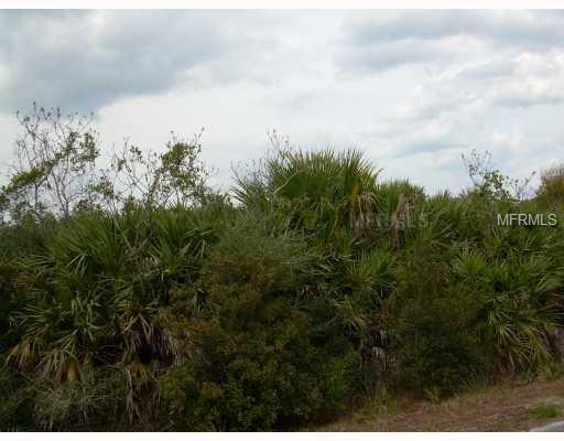 No Address-Vacant Land, Mims, FL 32754 (MLS #O5427550) :: The Duncan Duo Team