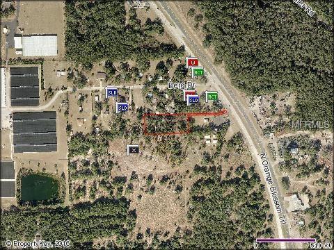 4264 N Orange Blossom Trail, Mount Dora, FL 32757 (MLS #O5430384) :: The Duncan Duo Team