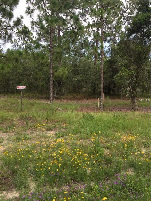 121 SE State Road SE, Morriston, FL 32668 (MLS #O5528939) :: Homepride Realty Services