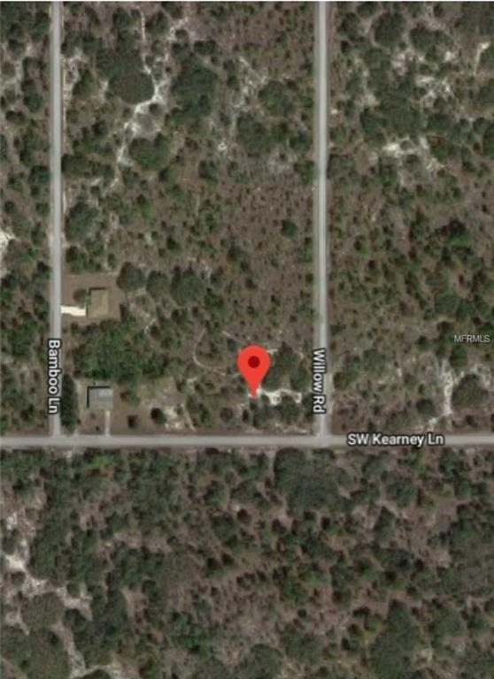 Undetermined, Dunnellon, FL 34431 (MLS #O5533520) :: The Duncan Duo Team