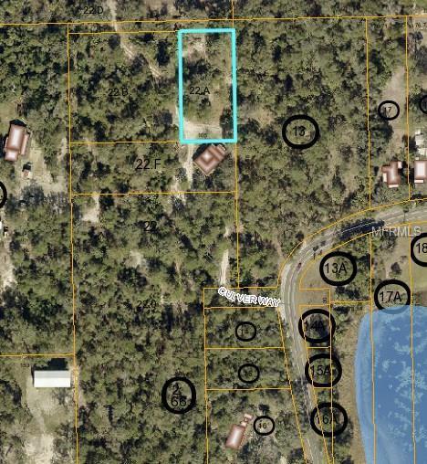 Address Not Published, Geneva, FL 32732 (MLS #O5533548) :: KELLER WILLIAMS CLASSIC VI